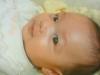 baby001