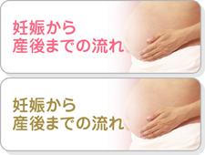 妊娠から産後までの流れ